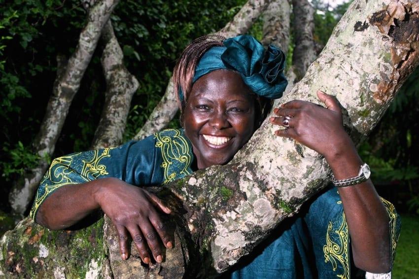 Wangari Maathai Muta